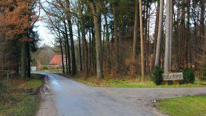 Ruhe Forst 10 300x169