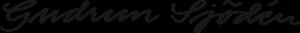 logotype 300x33