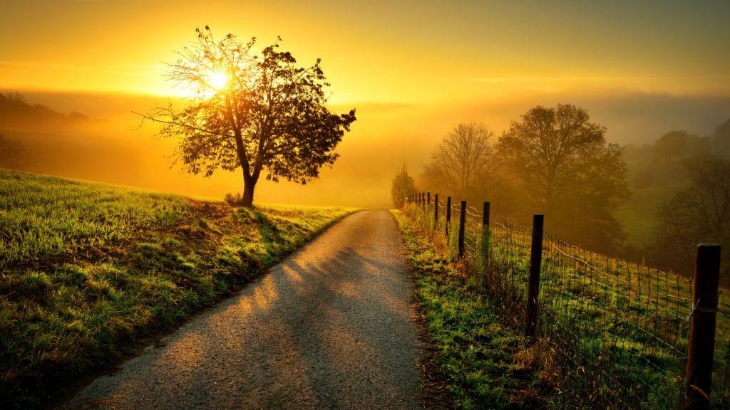 goto.greeen – ökologische nachhaltig leben im Münsterland